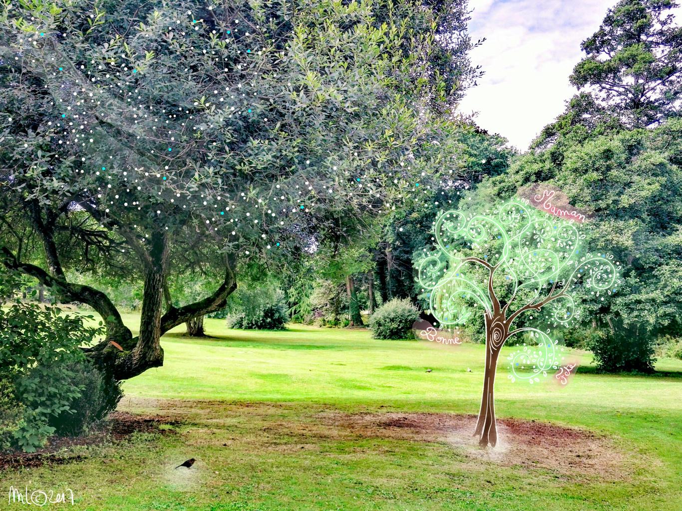 Communion des arbres